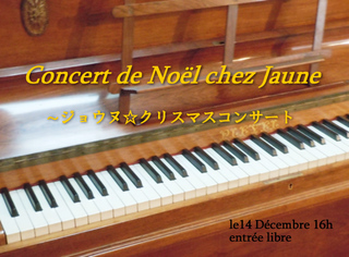 concert13.jpg